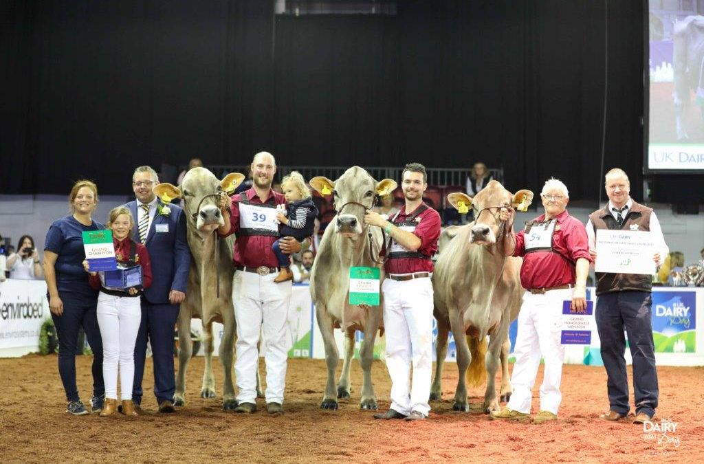 2021 Brown Swiss National Show Results from UK Dairy Day