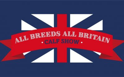 ALL BREEDS ALL BRITAIN CALF SHOW…. The Schedules are out!!